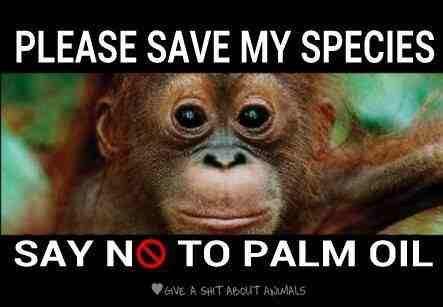 řekněte ne palmovému oleji